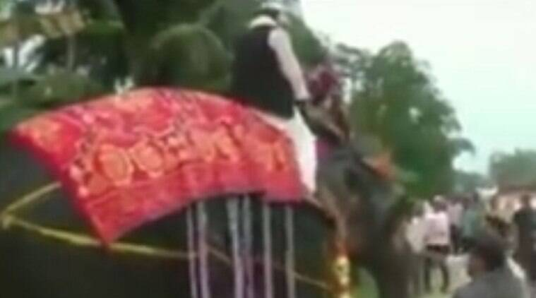 Deputy Speaker of the Assam Legislative AssemblyKripanath Mallah fell off from an elephant during a visit to his constituency on Sunday. (ANI)