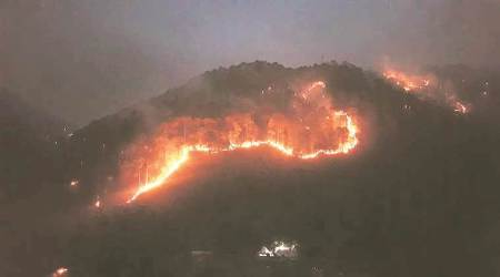Satellites identified forest fire incidents, indian Space Department, satellites in uttarakhand identified forest fire, uttarkhand forest fire, dehradun forest fire, india space news