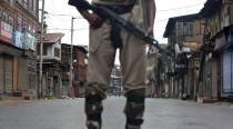 Jammu & Kashmir: Militants take police rifles, ammo from retired SSP'shouse