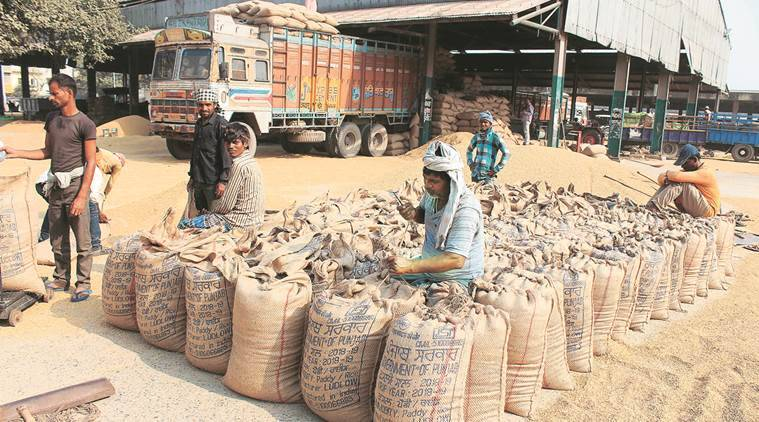 Procurement season: Farmers fret as 65% less paddy in mandis this year