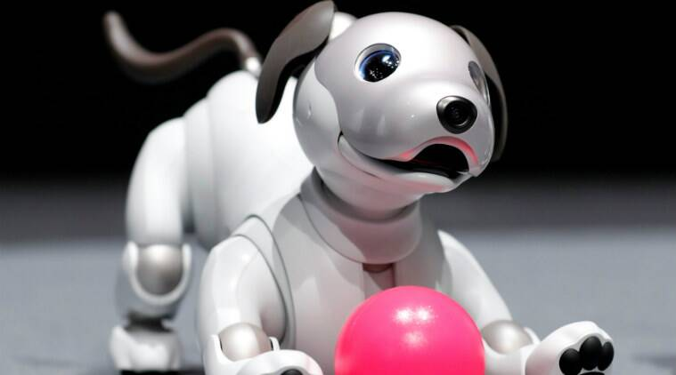 Artificial intelligence, Sony AIBO robot dog, Sony profits, cloud computing, consumer electronic business, AI technologies, OLED display, Facebook, Apple, Google, Sony Education Koov