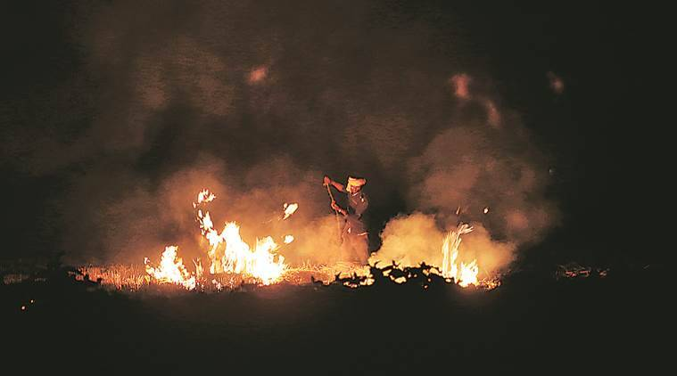 All fiddle as crop stubble burns, farmers say solutions out of reach