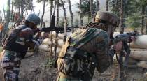 J&K encounter LIVE: Gunfight underway between security forces, militants in Nowgam, two militants believed to be trapped