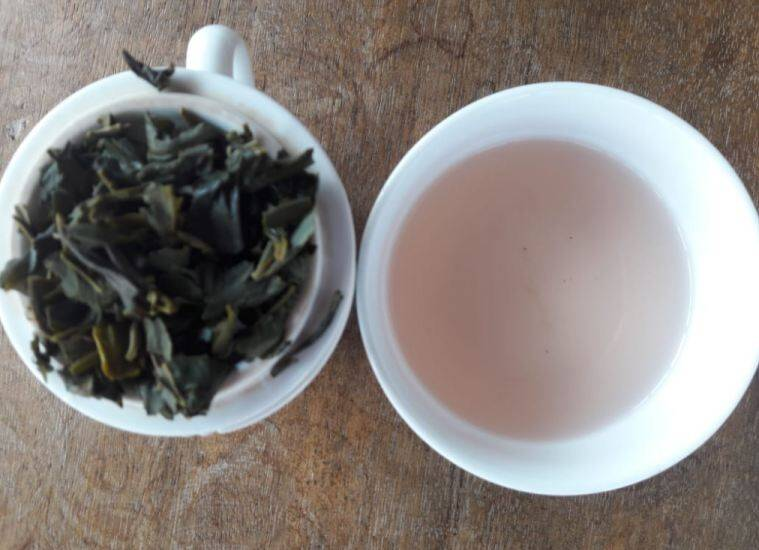 Purple Tea. Arunachal Pradesh, Donyi Polo Tea Estate