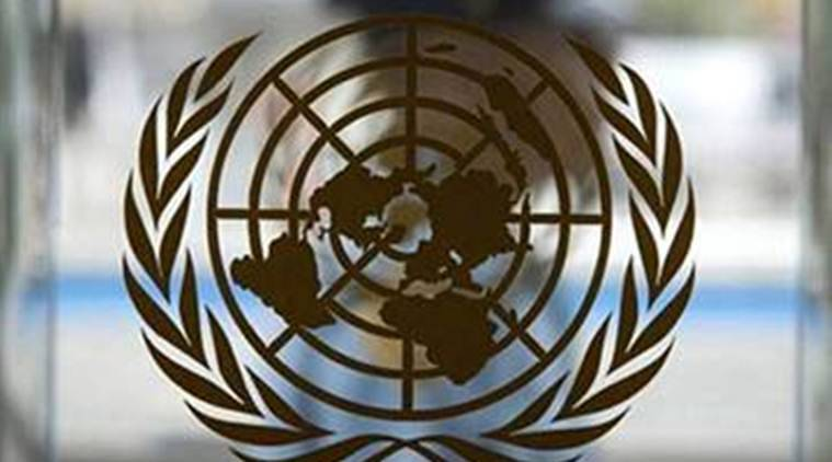 UN hopes for meeting on Syria constitution by late December