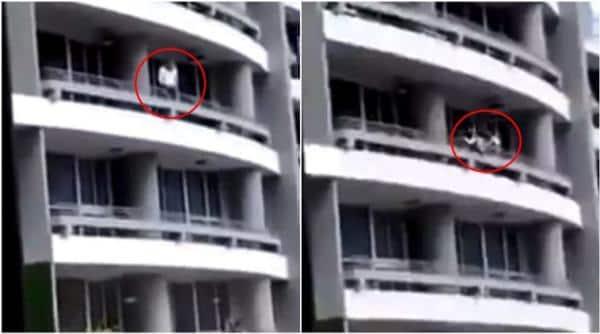 woman falls during selfie in panama, woman falls during selfie, selfie woman, woman in panama selfie fall, selfie fall viral video, indian express, indian express news
