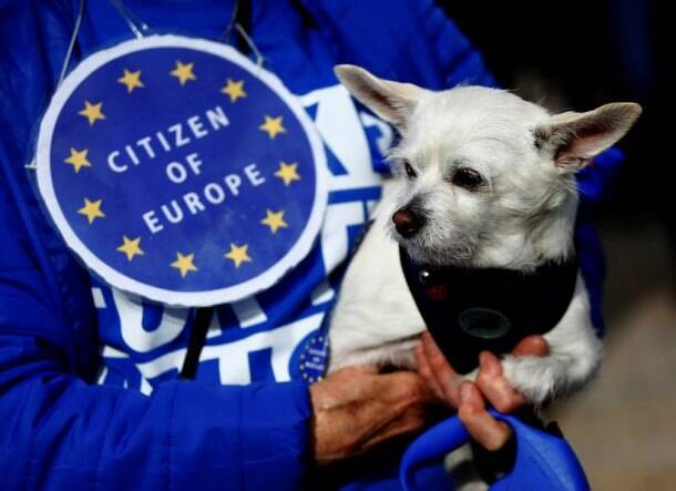 Dogs owners march on UK parliament demanding new Brexit 'Wooferendum'