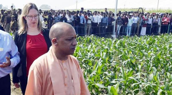 After record wheat procurement in UP, Yogi says drew inspiration from Chhattisgarh