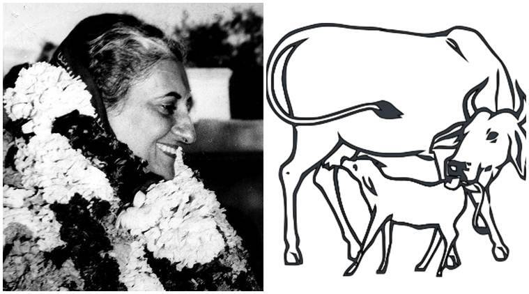 Cow Politics Is Not New For Congress, In Fact It Could Have Helped Create Indira's Aura