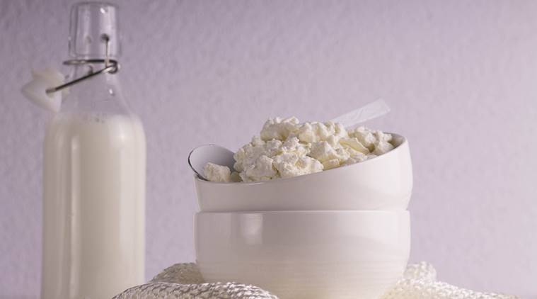cottage cheese, cottage cheese benefits, paneer benefits, cottage cheese diet, health benefits of cottage cheese, cottage cheese study, indian express, indian express news