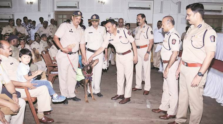Mumbai: Police dogs leave force after 10 years, accorded same honour as their human counterparts