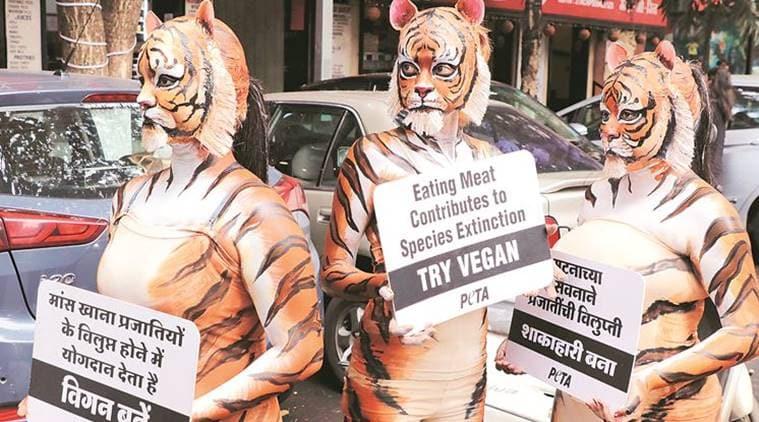 Pune: Go vegan, urge PETA activists