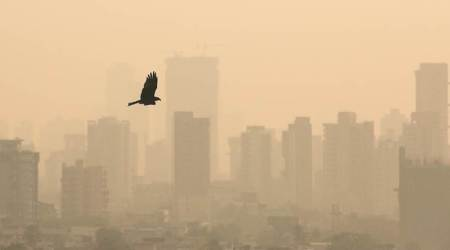 chandigarh smog, chandigarh air quality, aqi, diwali pollution, chandigarh news, indian express