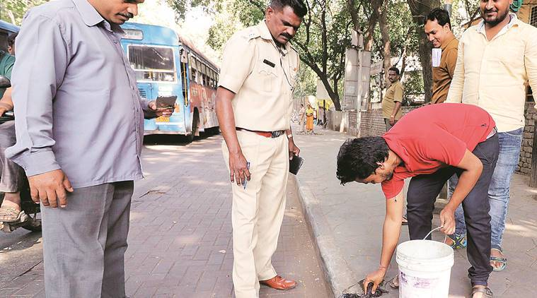 pune, pune news, spitting, spitting on road, spitting in public place, spitting on pune roads, indian express