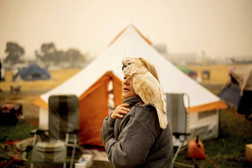 California wildfire refugees camp in Walmart parking lot amid uncertainty