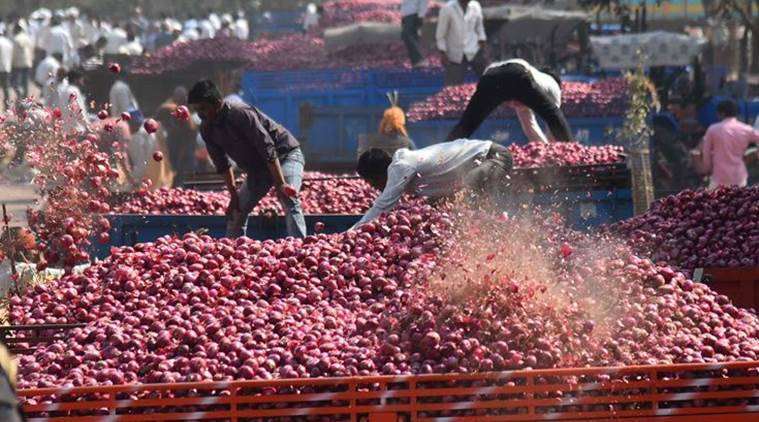 As glut hits prices in Maharashtra onion hub, farmers lose hope, brace for bleak new year