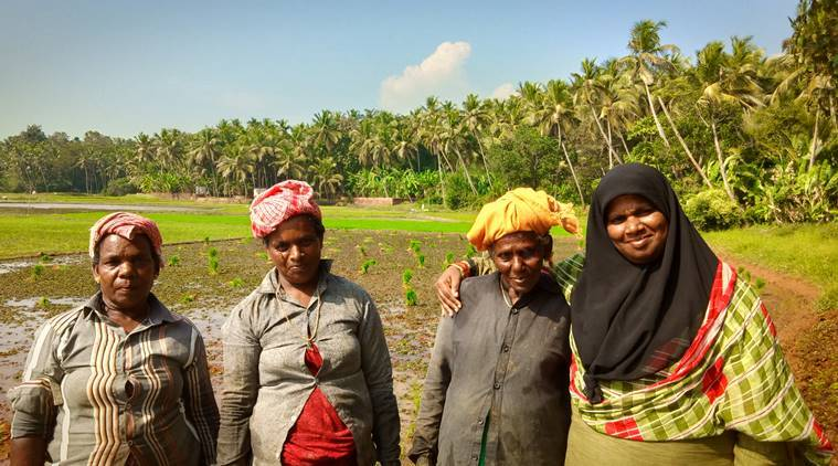 Kerala: How one woman reached out to 500, raised an agro company