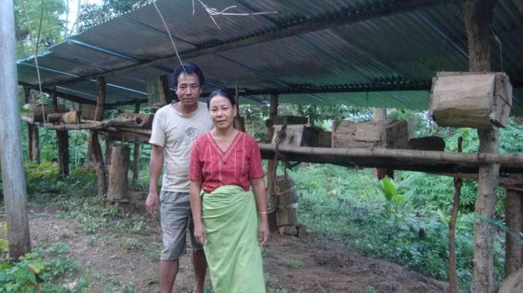 Nagaland Beekeeping and Honey Mission