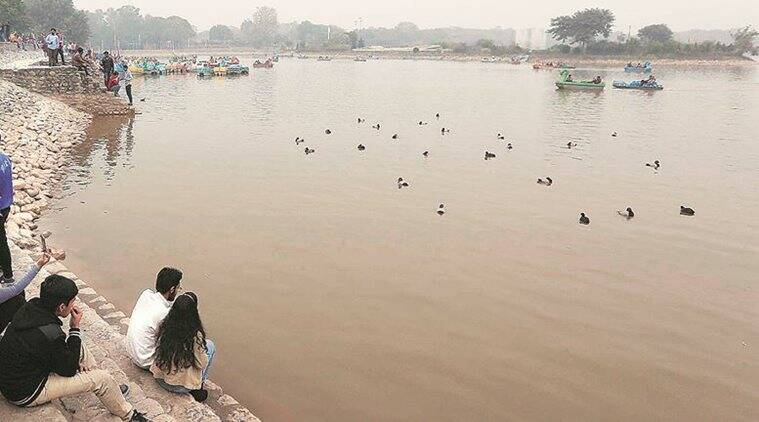 Sukhna Lake: UT fishery department team collects samples of water, bird droppings