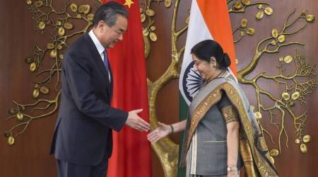 China's Wang proposes setting up Confucius Institutes in India