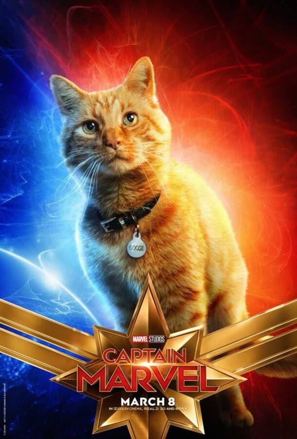 captain marvel cat goose