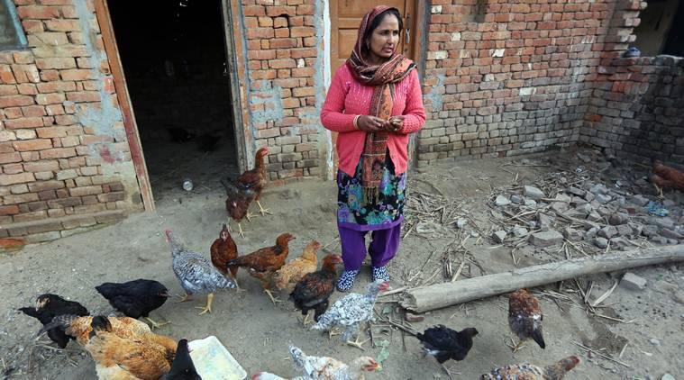 A day in the life of Barita Devi, recipient of 50 chicks under a UP scheme for women