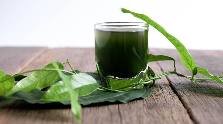 chlorophyll, chlorophyll water benefits, chlorophyll water detox drink, chlorophyll health benefits detox, is taking chlorophyll healthy, health news, fitness news, fitness, fitness trends, fitness fads, food trends, healthy food trends, indian express, indian express news