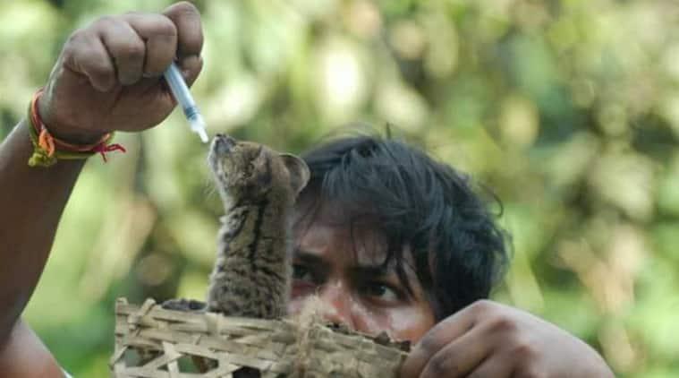 Binod Dulu Borah, wildlife rescue