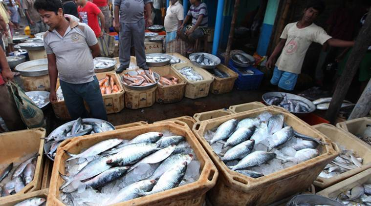 bmc, mumbai contractor refuses to build transit camp for fish market, mumbai fish market, bmc news