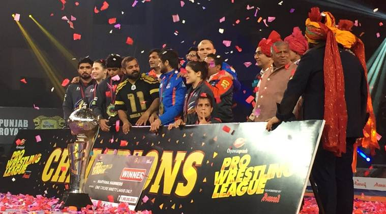 Haryana Hammers beat Punjab Royals to win title