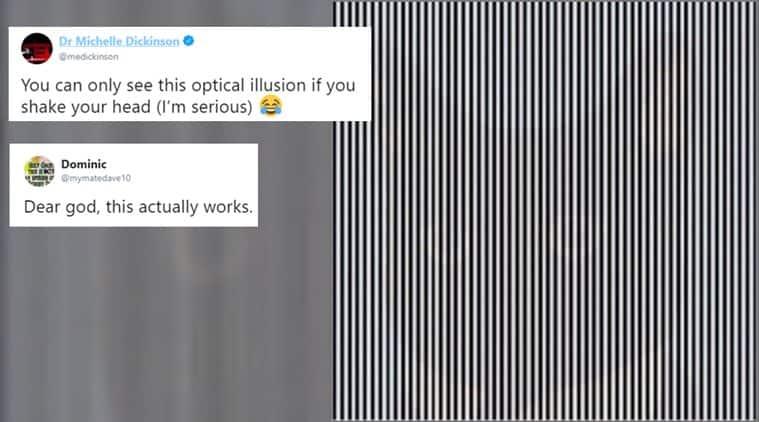 optical illusion, viral optical illusion, animal optical illusion, pinstripe optical illusion, viral news, trending news, viral photos, indian express