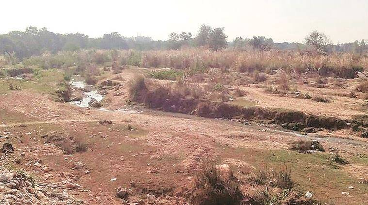 Cleaning of Patiala ki Rao: No private company shows interest in Nayagaon MC's bids