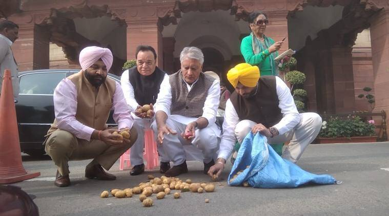 Congress MPs protest with potatoes outside Parliament House (Express Photo by Prem Nath Pandey)