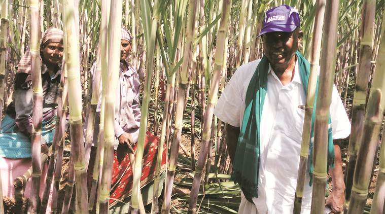 This 76-year-old organic farmer-scientist from Tamil Nadu has an inspiring story to tell
