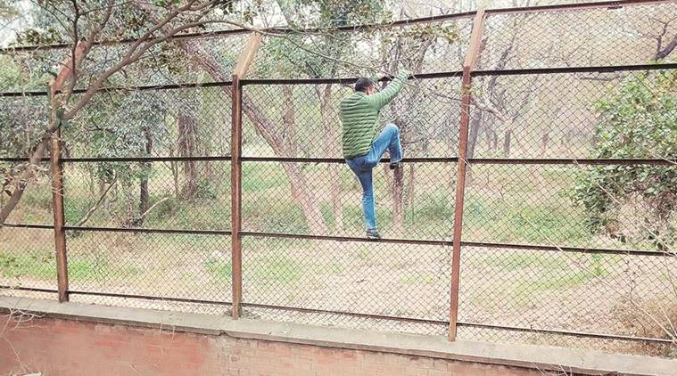 Day after man mauled to death at zoo: Two minutes, all it took to climb Chhatbir Zoo enclosure