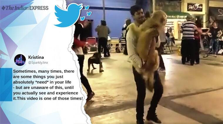 man dancing with dog, man dance with dog, careless whisper, man dog dance careless whisper, cute animal videos, dog video, viral videos, indian express