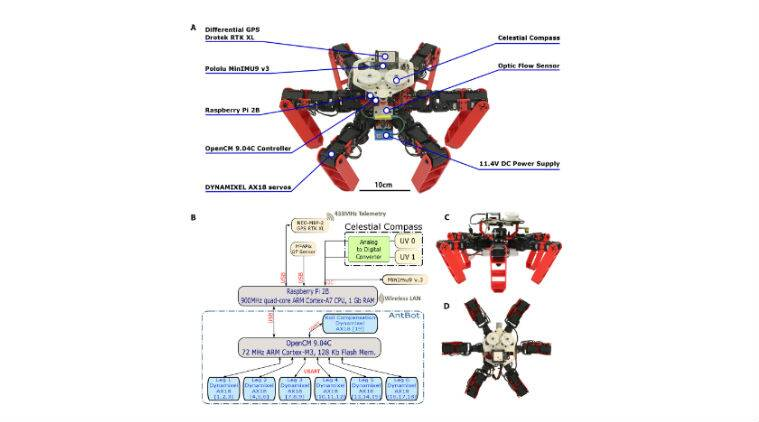 GPS robot, Antbot, walking robot, walking robot without GPS, French National Center for Scientific Research, CNRS, GPS, Global Positioning System