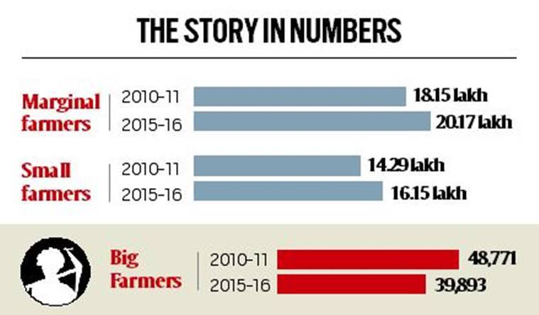 Rise in number of small & marginal farmers