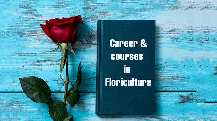 rose day, happy rose day, rose day quotes, careers in flower decoration, offbeat courses, floriculture, flower decoration courses, horticulture courses, agriculture courses, rose courses, cut flower courses, cut flower market, career in flowers, offbeat flowers, offbeat careers, top courses, sarkari result