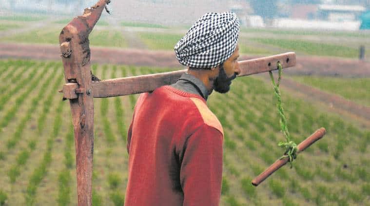 On two ends of spectrum, farmers term dole scheme a cruel joke
