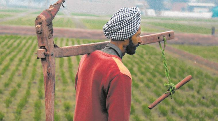 Explained: Why farmers are not cheering Punjab's fuel price cut