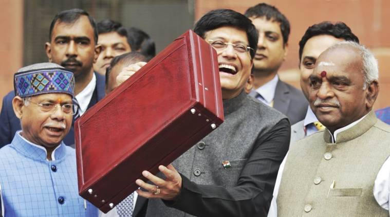 Acting Finance Minister Piyush Goyal arrives at the Parliament on Friday. (Express photo/Praveen Khanna)