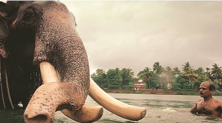 Kerala's new tourism campaign pans on the common man as the state's real hero