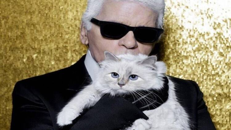Could Karl Lagerfelds Cat Choupette Inherit His Millions
