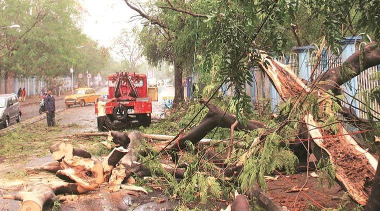 Six killed as thunderstorm hits Kolkata, nearby areas