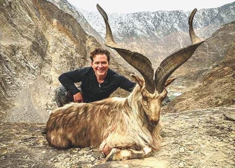 pakistan, markhor, markhor killing, pakistan markhor hunting, pakistan hunting season, gilgit baltistan hunting season,International Union for Conservation of Nature's Red List, pakistan news, world news