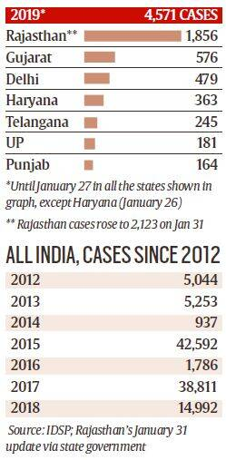 swine flu in India, Rajasthan