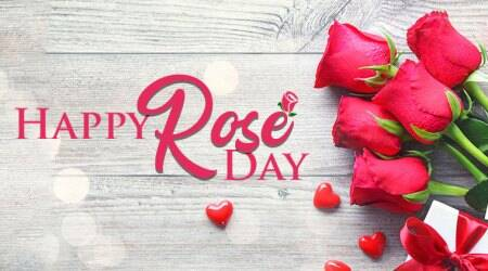 happy rose day, happy rose day 2019, happy rose day images, happy rose day images 2019, happy rose day wishes images, happy rose day quotes, happy rose day wishes quotes, happy rose day wallpaper, happy rose day video, happy rose day pics, happy rose day photos, indian express, indian express news