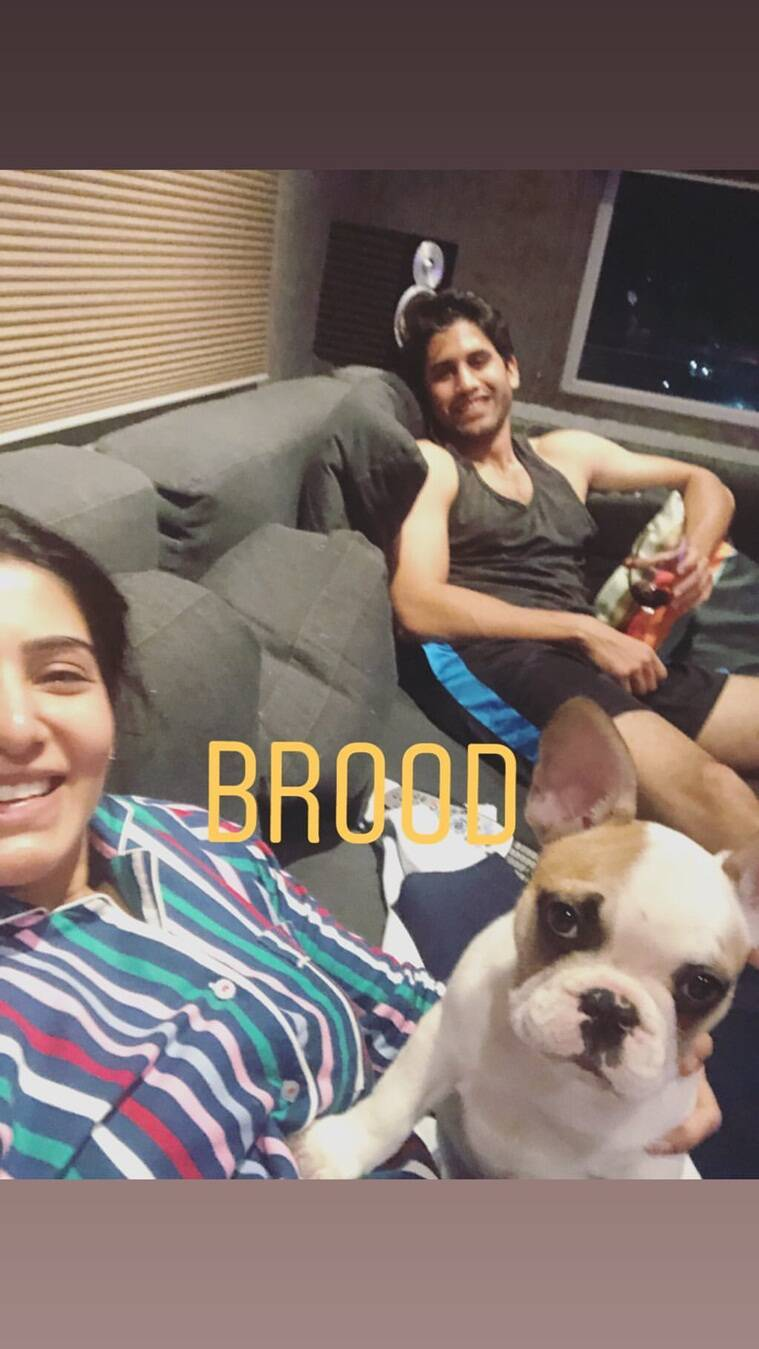 samantha akkineni with naga chaitanya