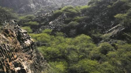 Why Aravallis matter to National Capital Region